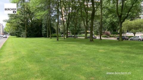 Fruithoflaan krijgt fietspad op groene middenberm